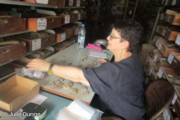 Julie sampling at IFAN in Dakar